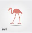 flat design flamingo icon vector image