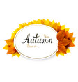 autumn banner with lettering on a oval background vector image