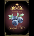 chocolate blueberries realistic vector image vector image