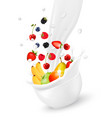 cup with fresh fruit and splash of milk vector image vector image