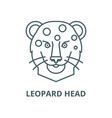 leopard head line icon linear concept vector image