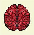 Mozak odozgoCOLOR vector image vector image