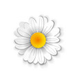 paper art chamomile vector image vector image