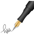 pen and signature vector image vector image