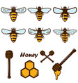 set bee and honey icons design element vector image