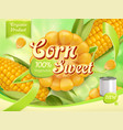 sweet corn 3d realistic package design vector image