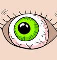 cartoon eye vector image vector image