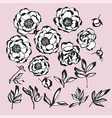 hand drawn ink style flowers kit vector image vector image