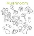 mushroom hand drawn sketch vector image vector image