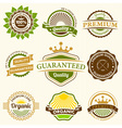 Set of Nine Fresh Organic Labels and Elements vector image