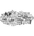 basic puppy care first weeks text word cloud vector image vector image