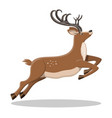 cute jumping deer with antlers vector image