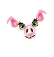 cute pig face muzzle for decorated vector image