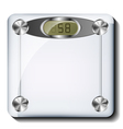 Digital bathroom scale vector image vector image