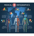 Human Body Anatomy Infographic vector image