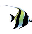 scalar fish prev2 vector image vector image