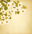 Vintage background with blossoming tree brunch and vector image vector image