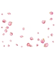 Abstract background with flying pink rose petals vector image