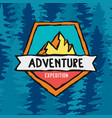 adventure expedition label on pine tree background vector image