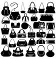 Female purse set vector image