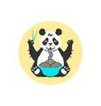panda eating noodles with chopsticks vector image
