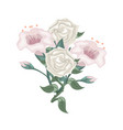 set of white roses and purple tulips vector image vector image