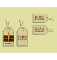 Stylish Farm Fresh sticker and label template or vector image vector image