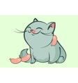 fat blue cat smile vector image