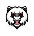 angry giant panda mascot vector image