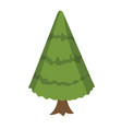 christmas tree in a flat style fir tree isolated vector image