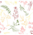 drawing floral vintage seamless pattern vector image