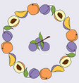 plum and peach round frame vector image