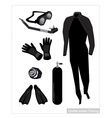 Set of Scuba Diving Equipment on White Background vector image