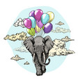 elephant flying with air balloons in sky vector image vector image