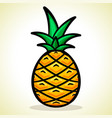 pineapple design vector image
