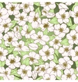 Seamless pattern with cherry blossom flowers vector image vector image