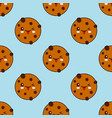 seamless pattern with chocolate cookie isolated on vector image vector image