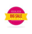 special offer big sale price label vector image