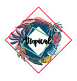 tropical leaves round frame vector image