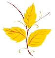 yellow leaves vector image vector image