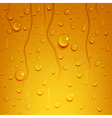beer background with water drops vector image vector image