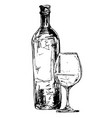 bottle wine with glass vector image