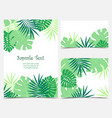 palm leaves backgrounds vector image vector image