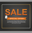 sale banner special offer vector image vector image