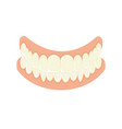 set of false teeth implanted jaw vector image