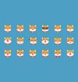 shiba inu emoticon flat design vector image