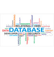 word cloud database vector image vector image