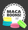 colorful macaroons on a gray background vector image