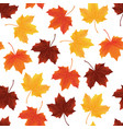 fallen autumn leaves seamless pattern texture vector image