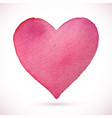 heart beautiful pink watercolor vector image vector image